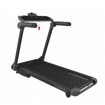 Cadenza Fitness TTF